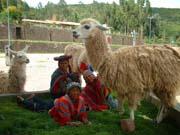 Diario de la Expedicion a Machupichu